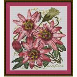 Stickvorlage Passiflora